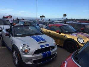 Cecil awaits the the start of MTTS 2014