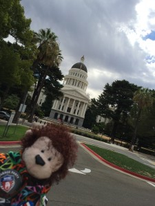 Cecil at the California State Capital building in Sacramento