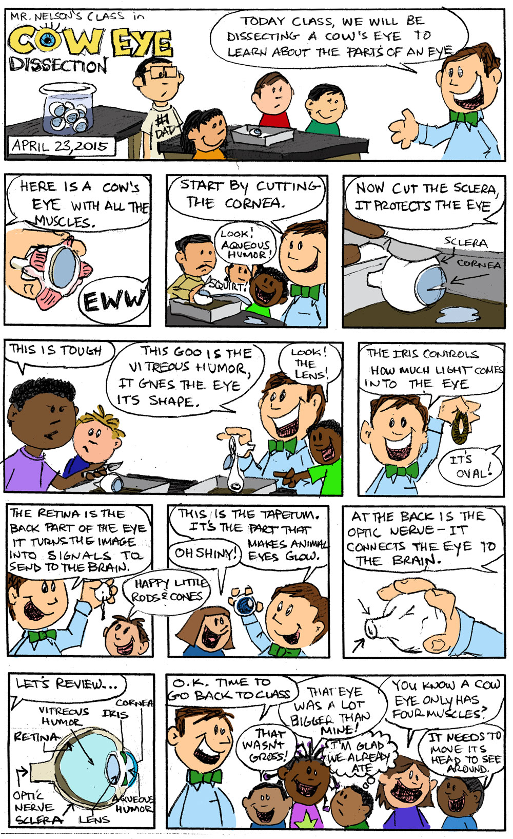 Comics in the Classroom- Third Graders & Cow's Eyes